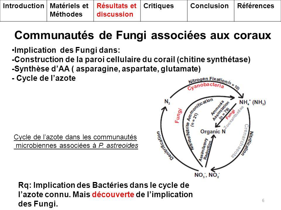 Communautés de Fungi associées aux coraux