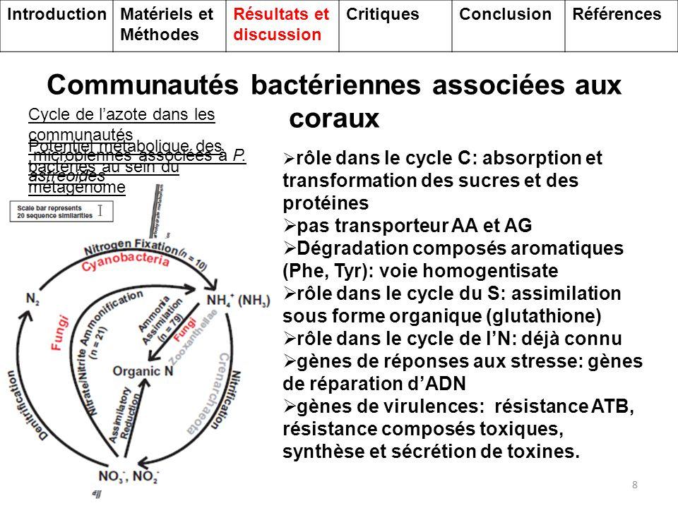 Communautés bactériennes associées aux coraux