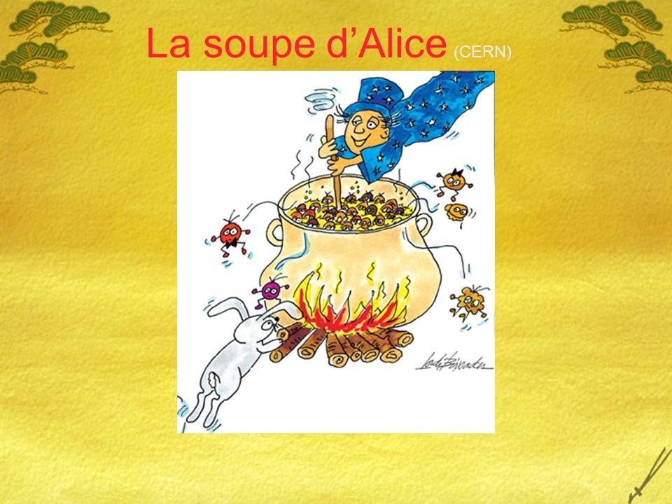 La soupe d'Alice (CERN)