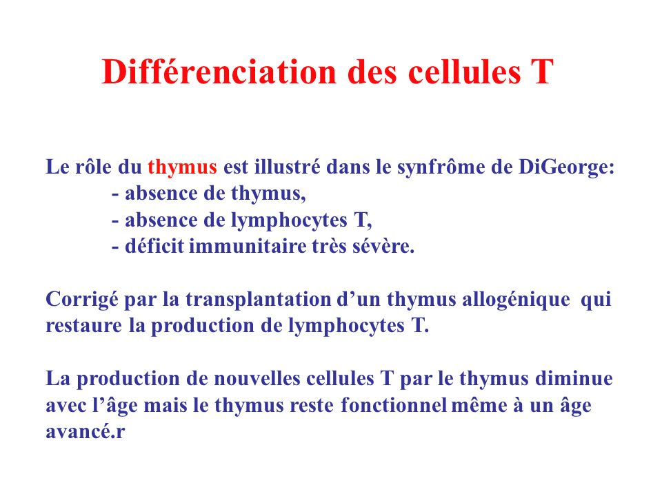 Différenciation des cellules T