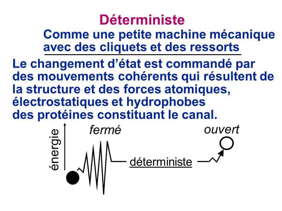 Déterministe Comme une petite machine mécanique