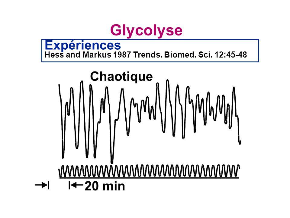 Glycolyse Expériences Chaotique 20 min