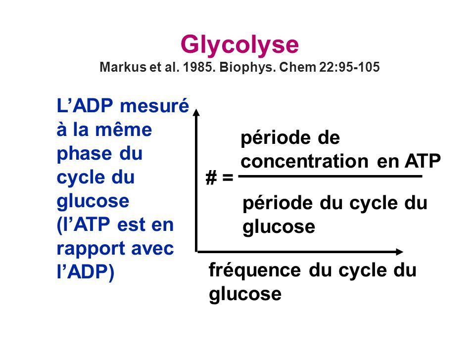 Markus et al. 1985. Biophys. Chem 22:95-105