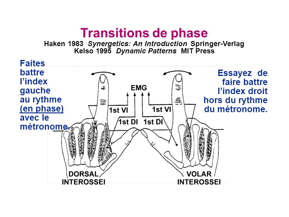 Transitions de phase Faites battre l'index gauche