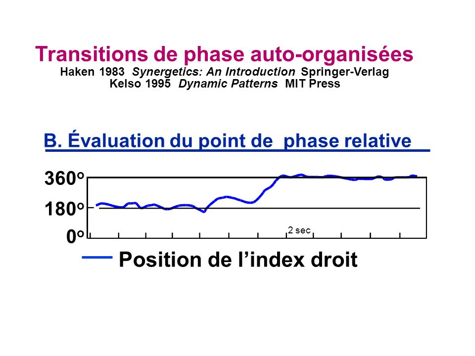 Transitions de phase auto-organisées