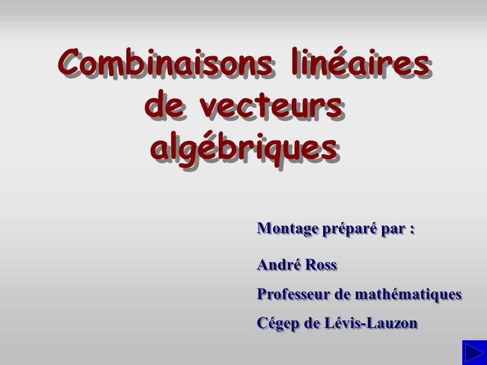 Combinaisons linéaires de vecteurs algébriques