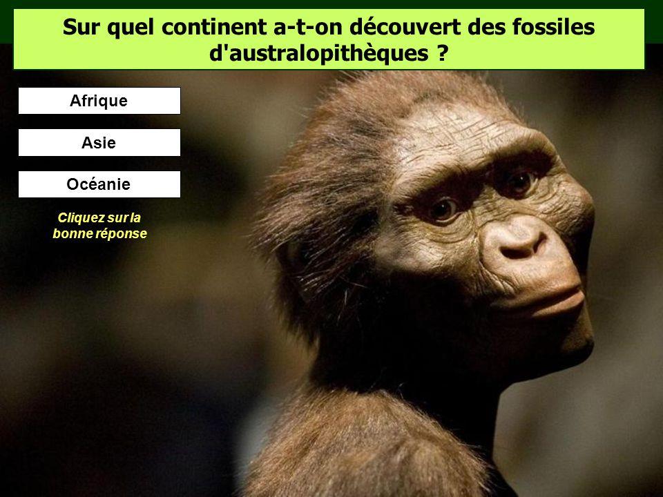Sur quel continent a-t-on découvert des fossiles d australopithèques