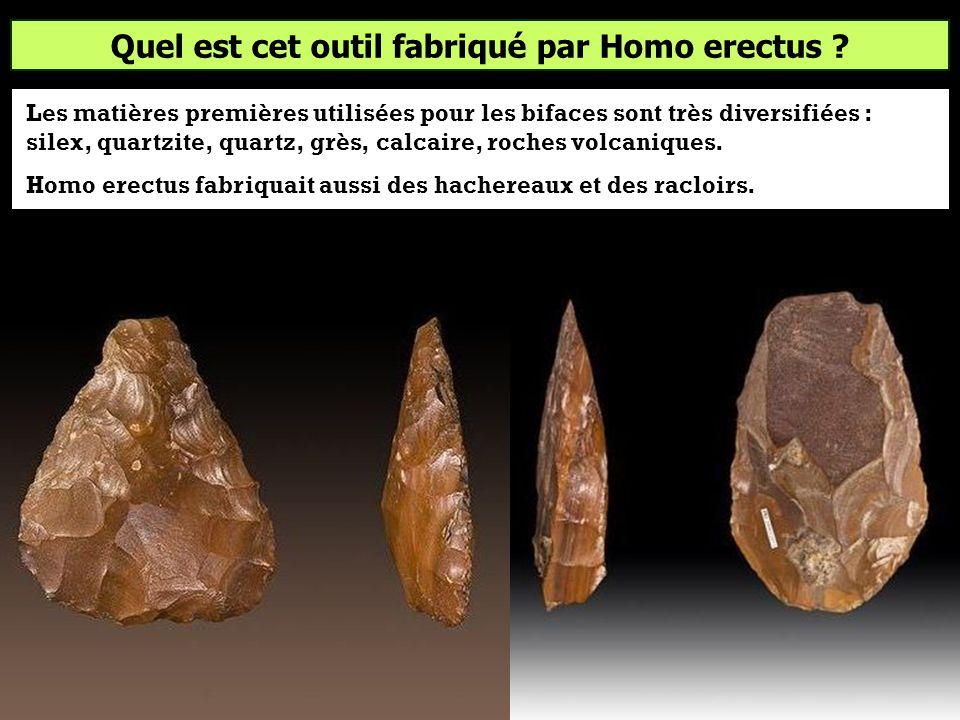 Quel est cet outil fabriqué par Homo erectus