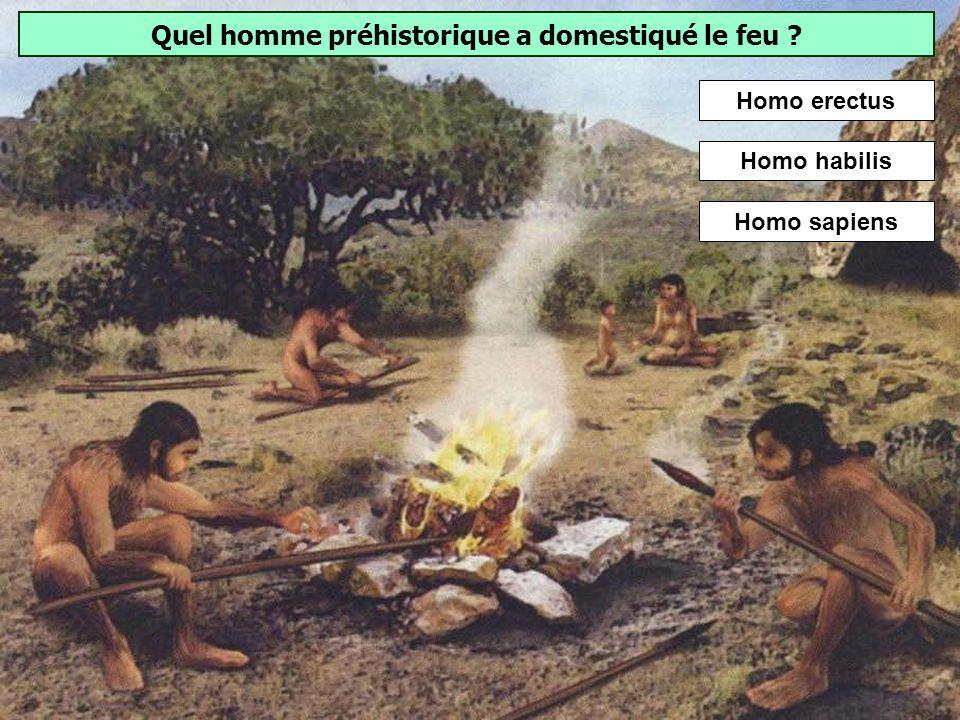 Quel homme préhistorique a domestiqué le feu