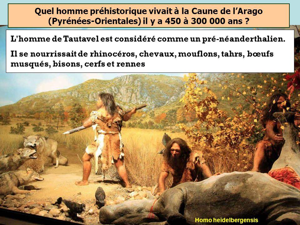 L homme de Tautavel est considéré comme un pré-néanderthalien.