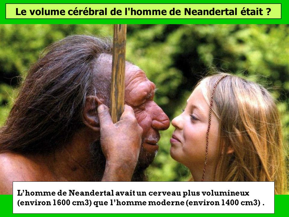 Le volume cérébral de l homme de Neandertal était