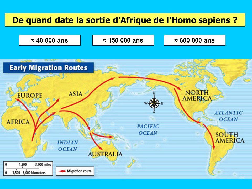 De quand date la sortie d'Afrique de l'Homo sapiens