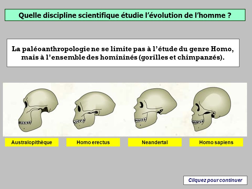 Quelle discipline scientifique étudie l'évolution de l'homme