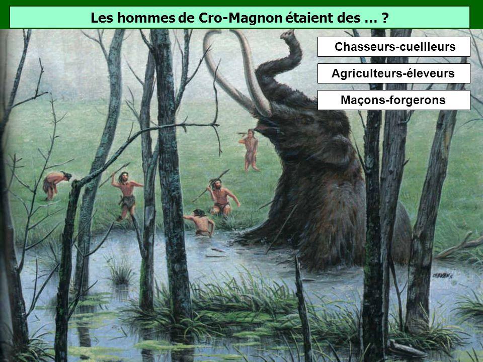 Les hommes de Cro-Magnon étaient des …
