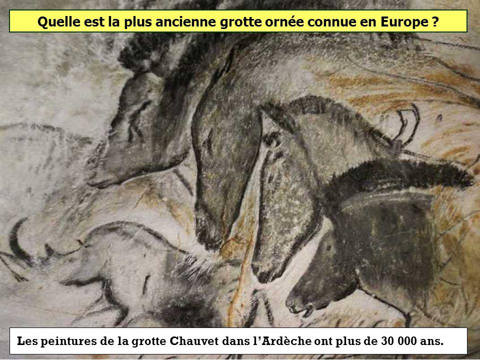Quelle est la plus ancienne grotte ornée connue en Europe