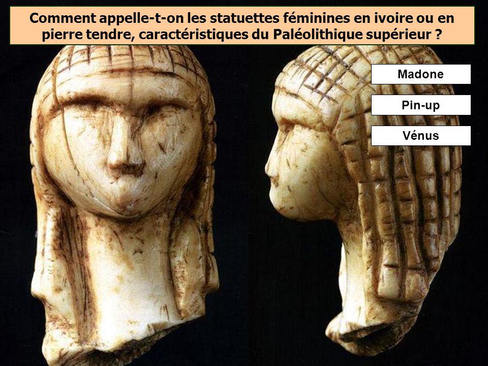 Comment appelle-t-on les statuettes féminines en ivoire ou en pierre tendre, caractéristiques du Paléolithique supérieur