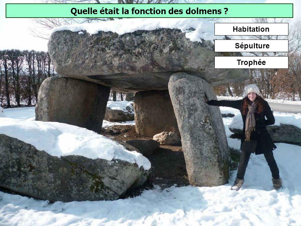 Quelle était la fonction des dolmens