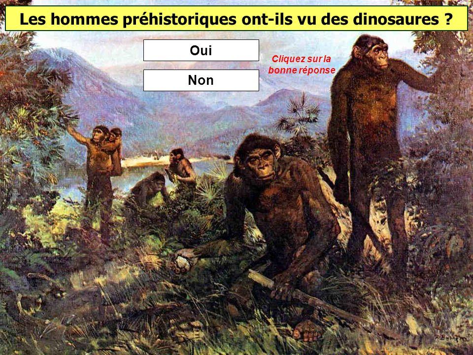Les hommes préhistoriques ont-ils vu des dinosaures