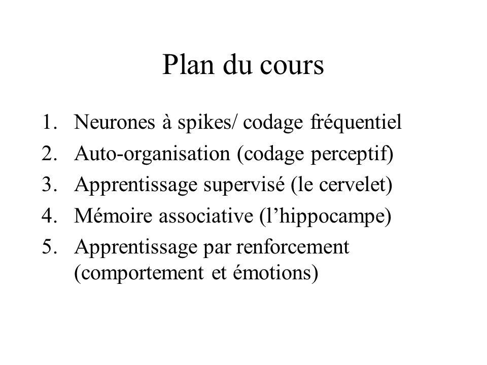 Plan du cours Neurones à spikes/ codage fréquentiel