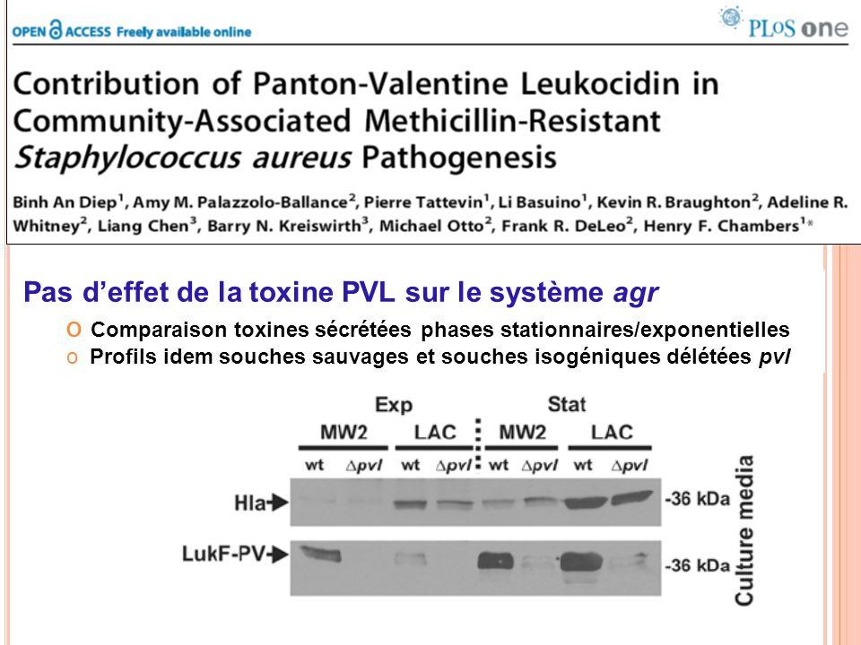 Pas d'effet de la toxine PVL sur le système agr