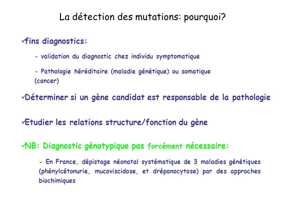 La détection des mutations: pourquoi