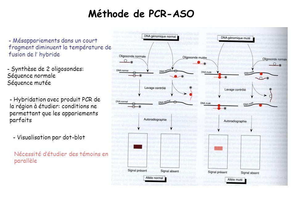 Méthode de PCR-ASO - Mésappariements dans un court fragment diminuent la température de fusion de l' hybride.
