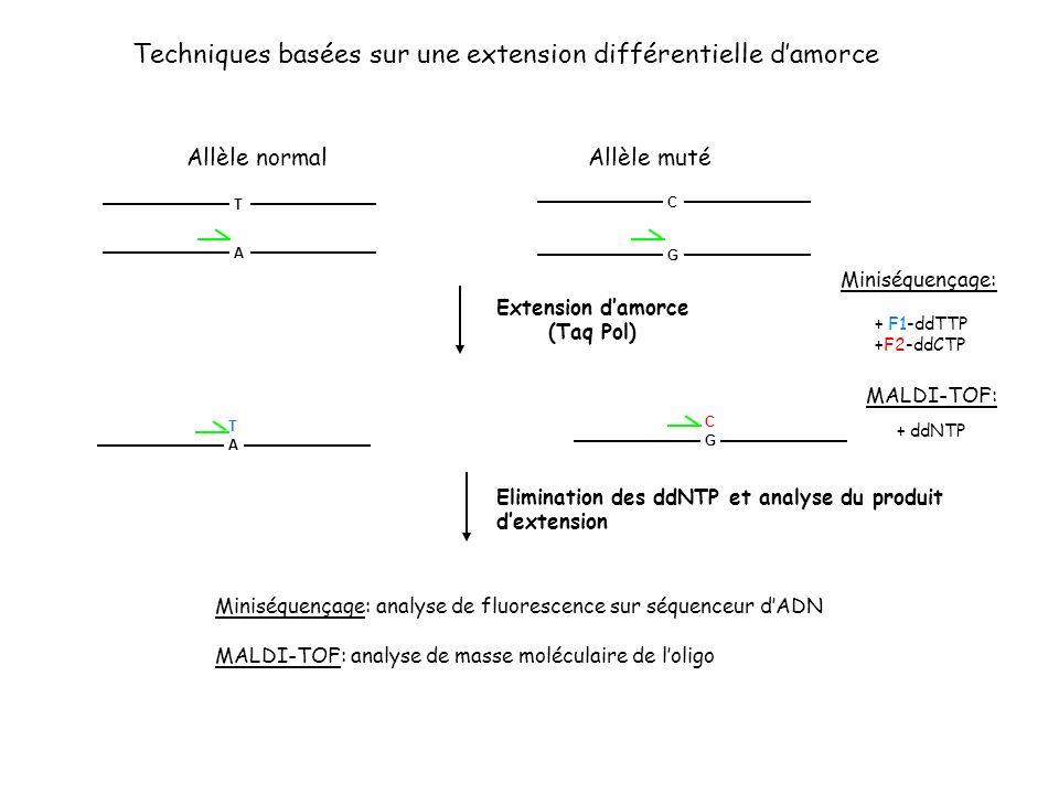 Techniques basées sur une extension différentielle d'amorce