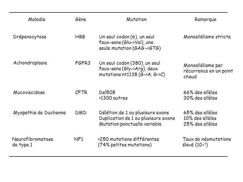 Maladie Gène. Mutation. Remarque. Drépanocytose. HBB. Un seul codon (6), un seul faux-sens (Glu->Val), une seule mutation (GAG ->GTG)