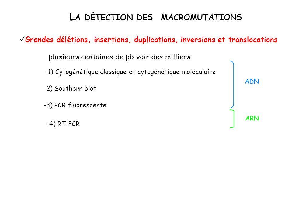 La détection des macromutations