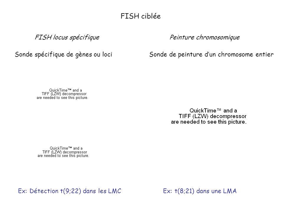 FISH ciblée FISH locus spécifique Sonde spécifique de gènes ou loci