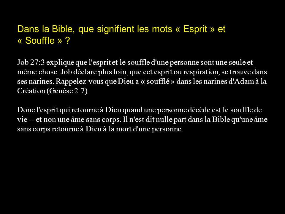 Dans la Bible, que signifient les mots « Esprit » et « Souffle »