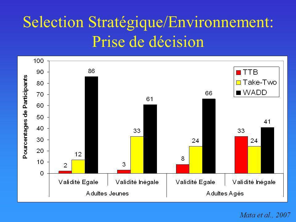 Selection Stratégique/Environnement: Prise de décision