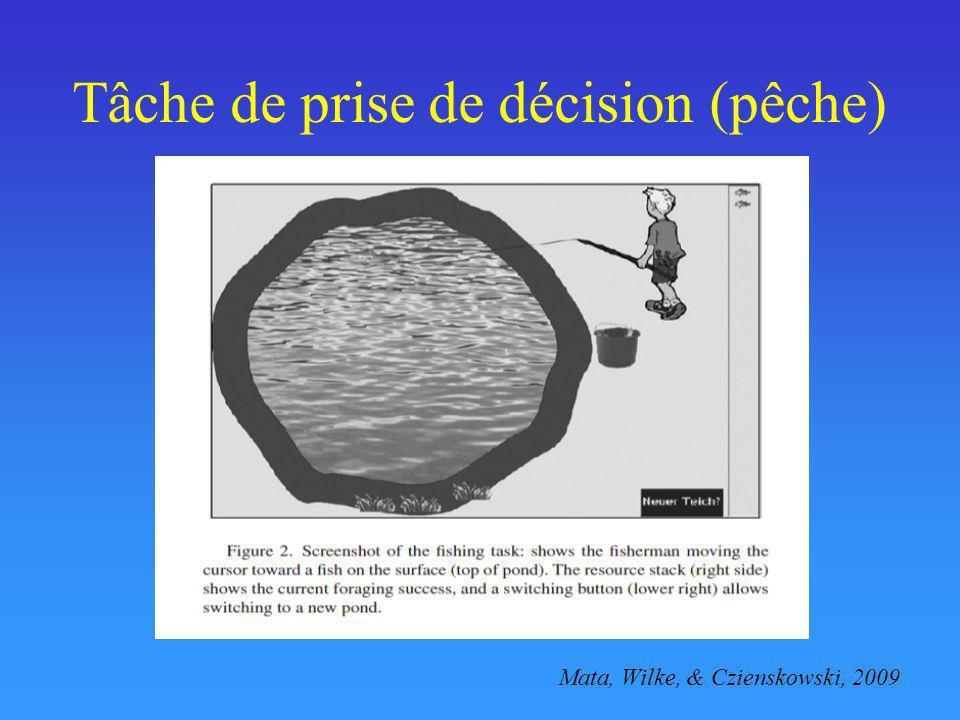 Tâche de prise de décision (pêche)