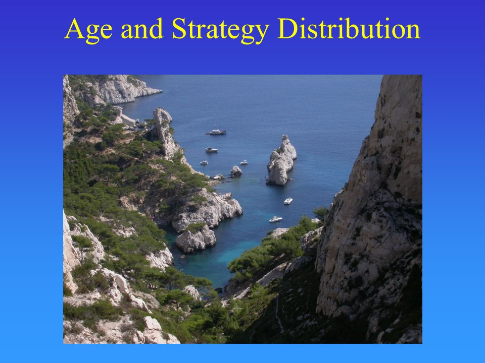 Age and Strategy Distribution