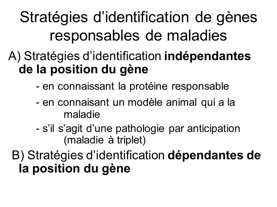 Stratégies d'identification de gènes responsables de maladies