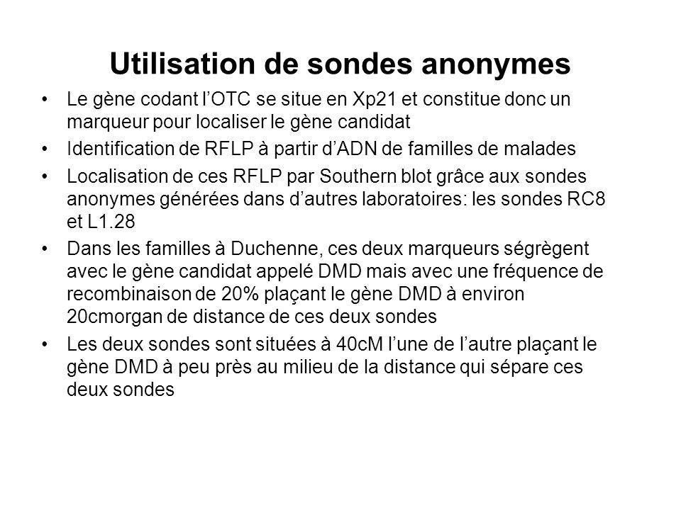 Utilisation de sondes anonymes