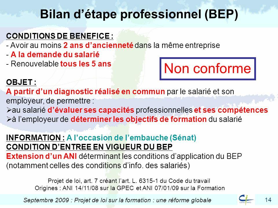Bilan d'étape professionnel (BEP)