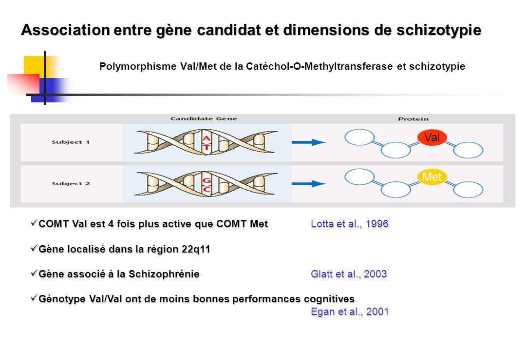 Association entre gène candidat et dimensions de schizotypie
