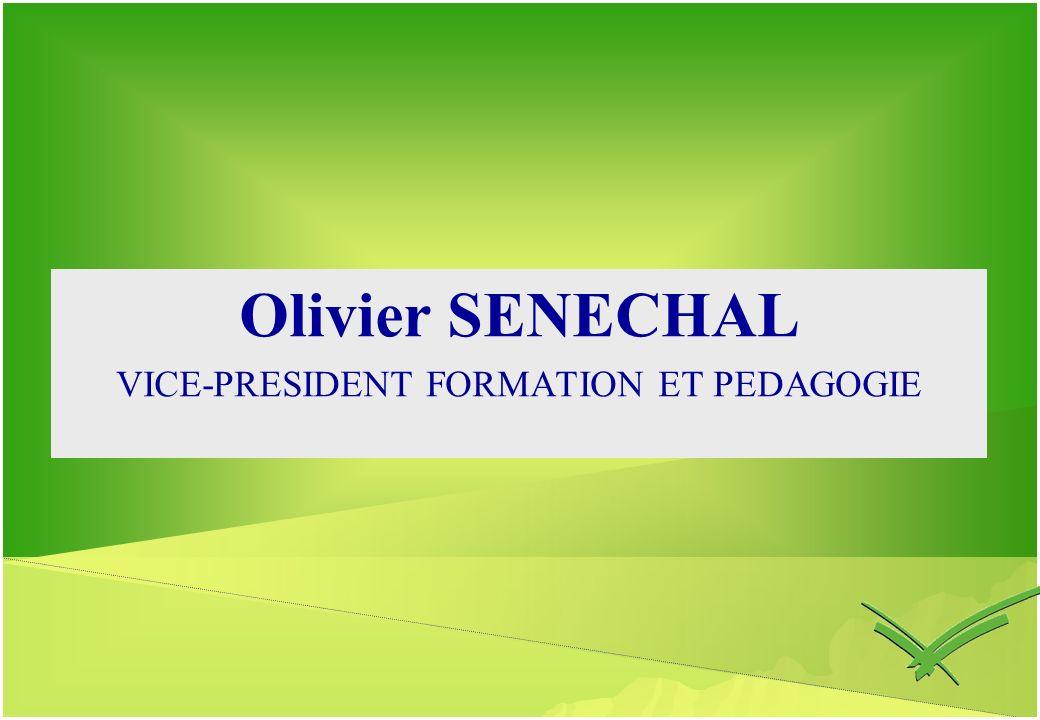 VICE-PRESIDENT FORMATION ET PEDAGOGIE
