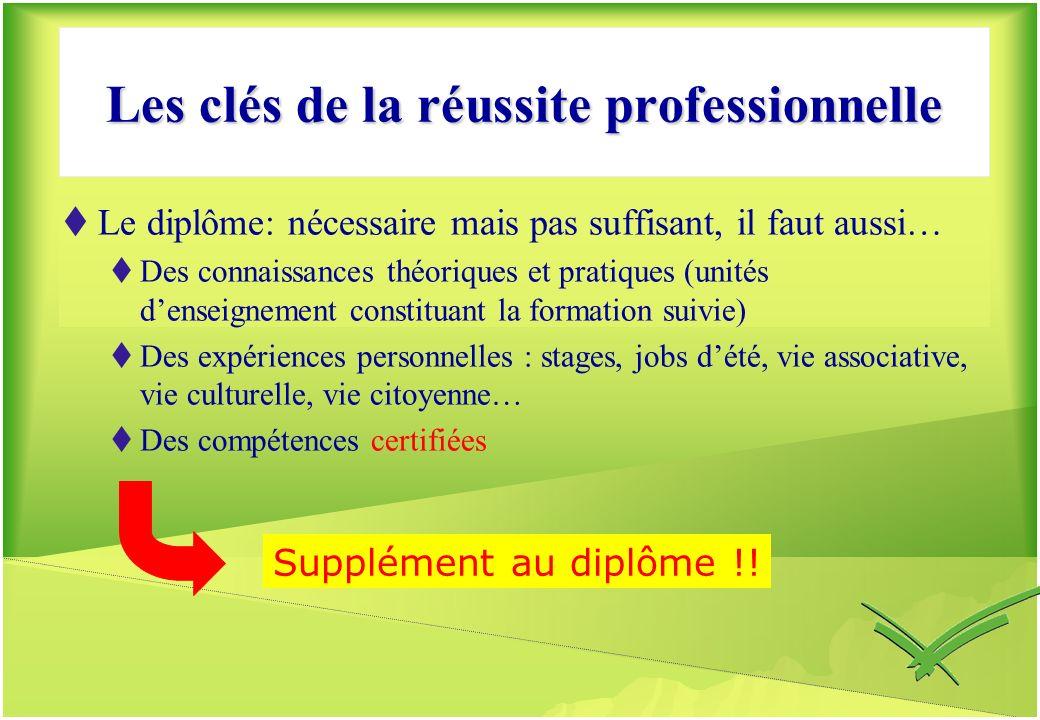 Les clés de la réussite professionnelle
