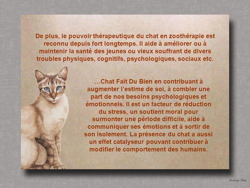 De plus, le pouvoir thérapeutique du chat en zoothérapie est reconnu depuis fort longtemps. Il aide à améliorer ou à maintenir la santé des jeunes ou vieux souffrant de divers troubles physiques, cognitifs, psychologiques, sociaux etc.