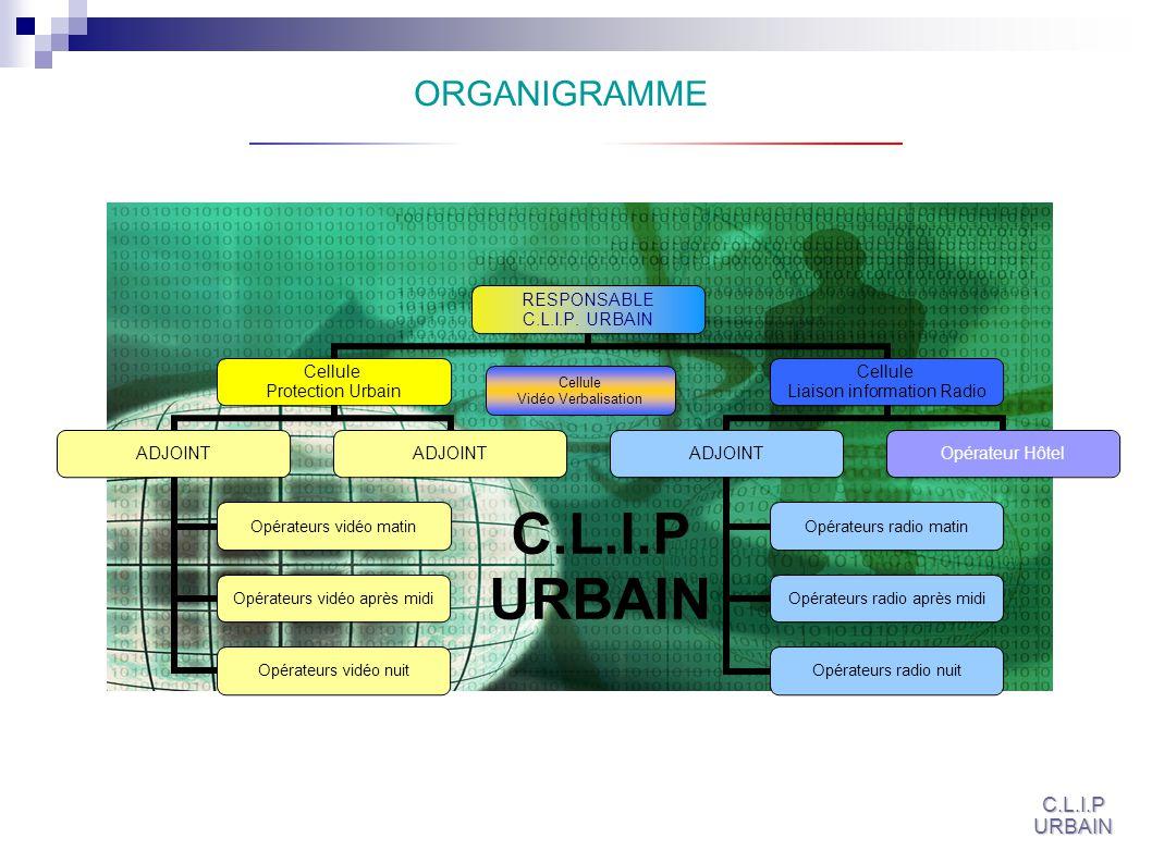 ORGANIGRAMME Cellule Vidéo Verbalisation C.L.I.P URBAIN C.L.I.P URBAIN