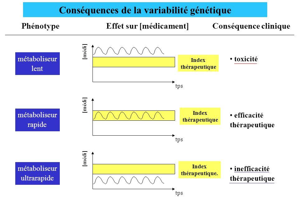 Conséquences de la variabilité génétique