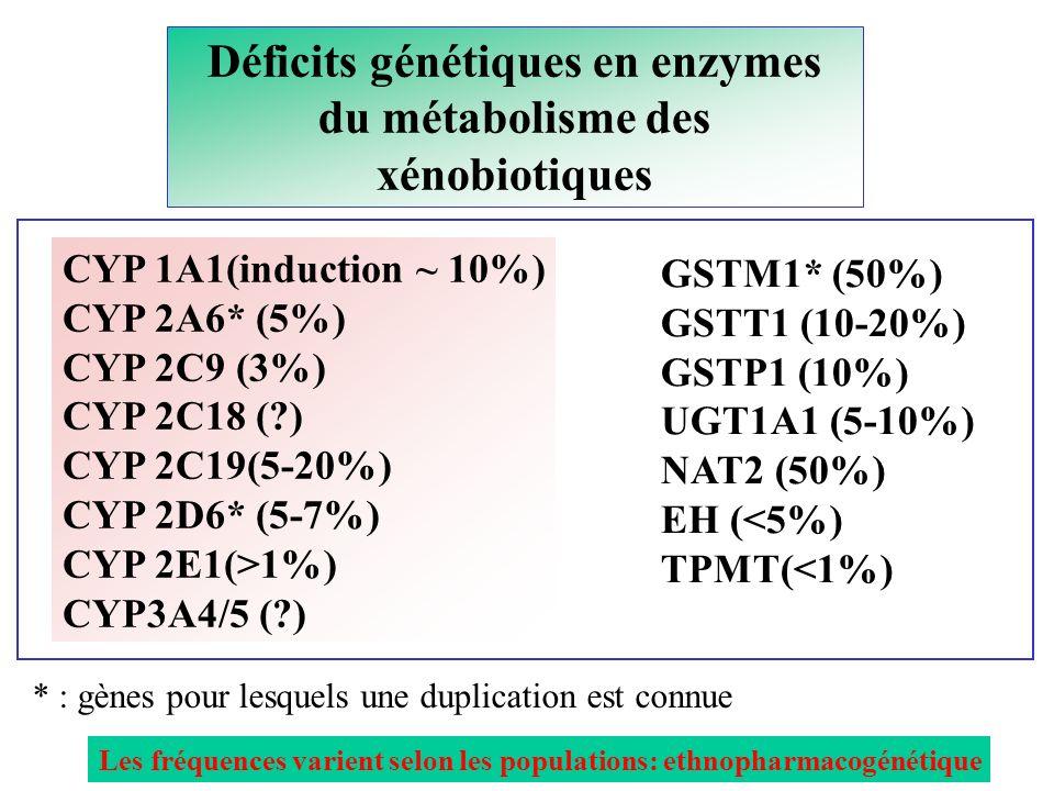 Déficits génétiques en enzymes du métabolisme des xénobiotiques