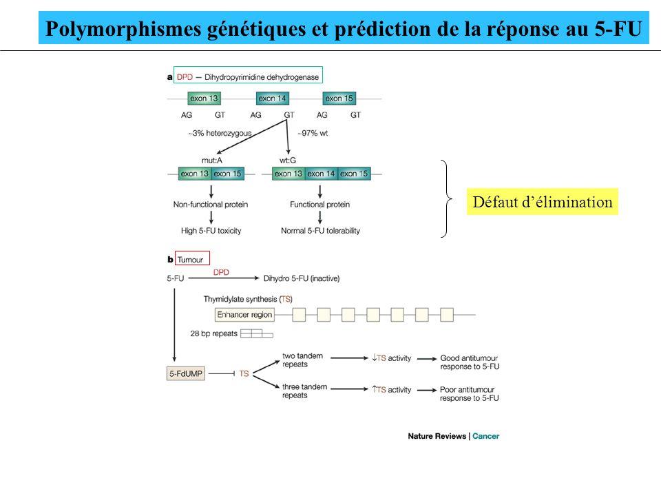 Polymorphismes génétiques et prédiction de la réponse au 5-FU
