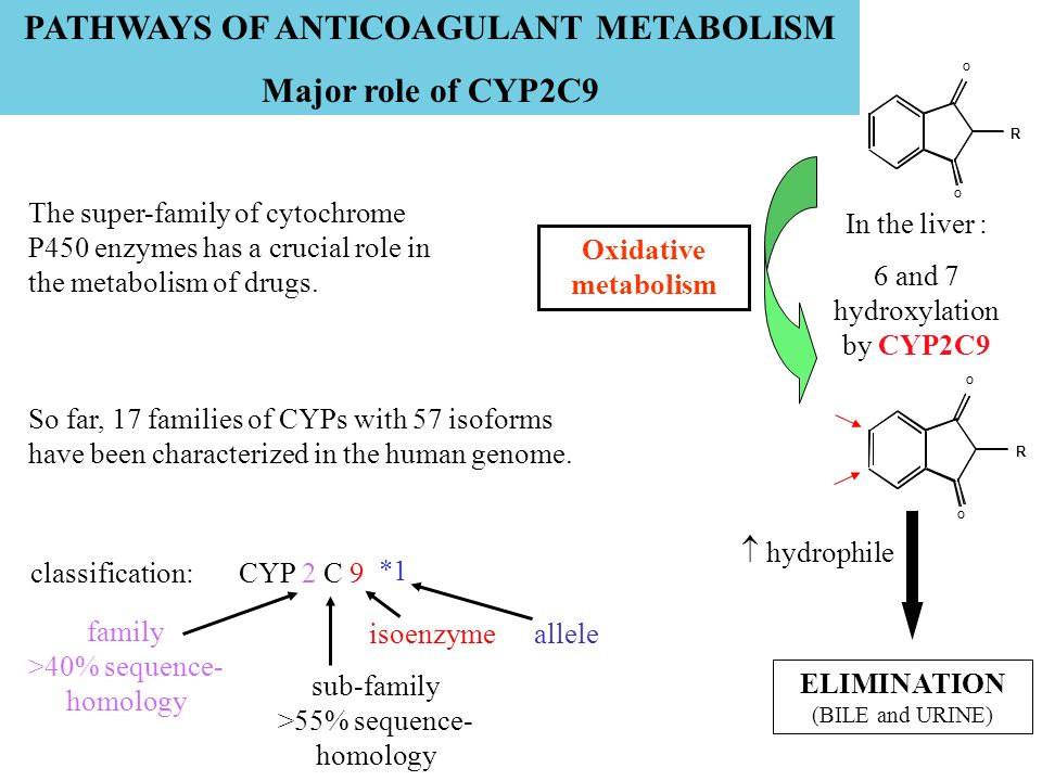 PATHWAYS OF ANTICOAGULANT METABOLISM