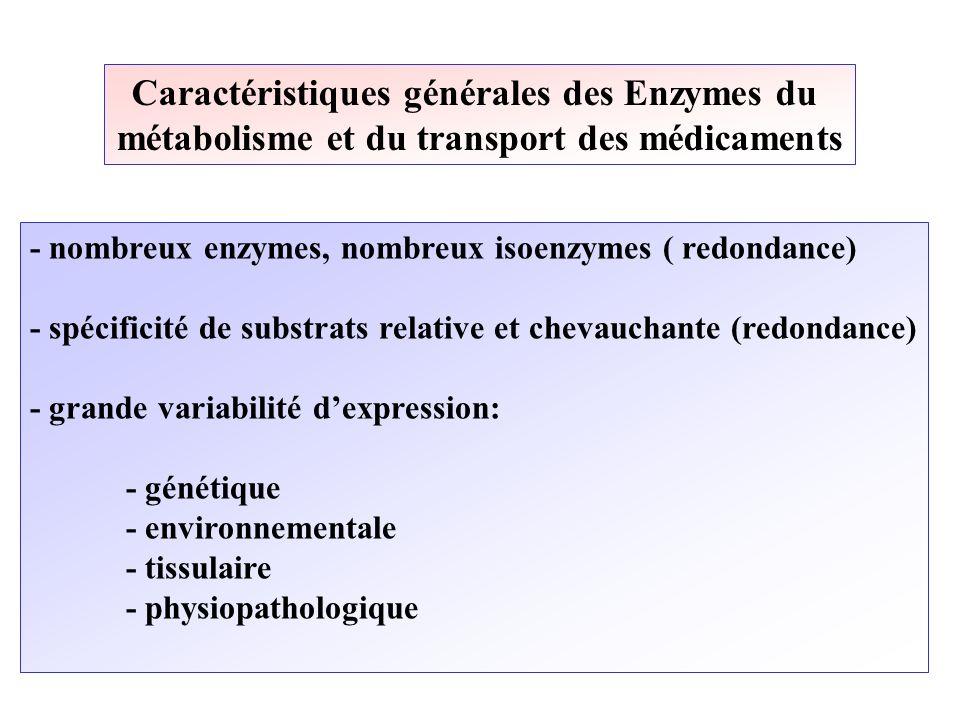Caractéristiques générales des Enzymes du