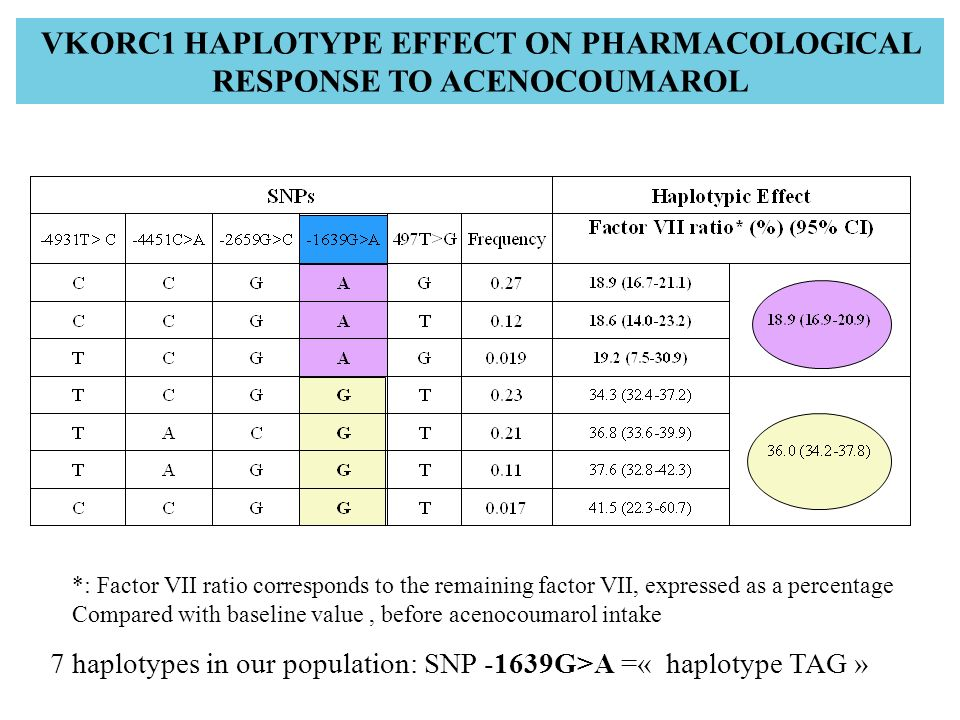 VKORC1 HAPLOTYPE EFFECT ON PHARMACOLOGICAL RESPONSE TO ACENOCOUMAROL