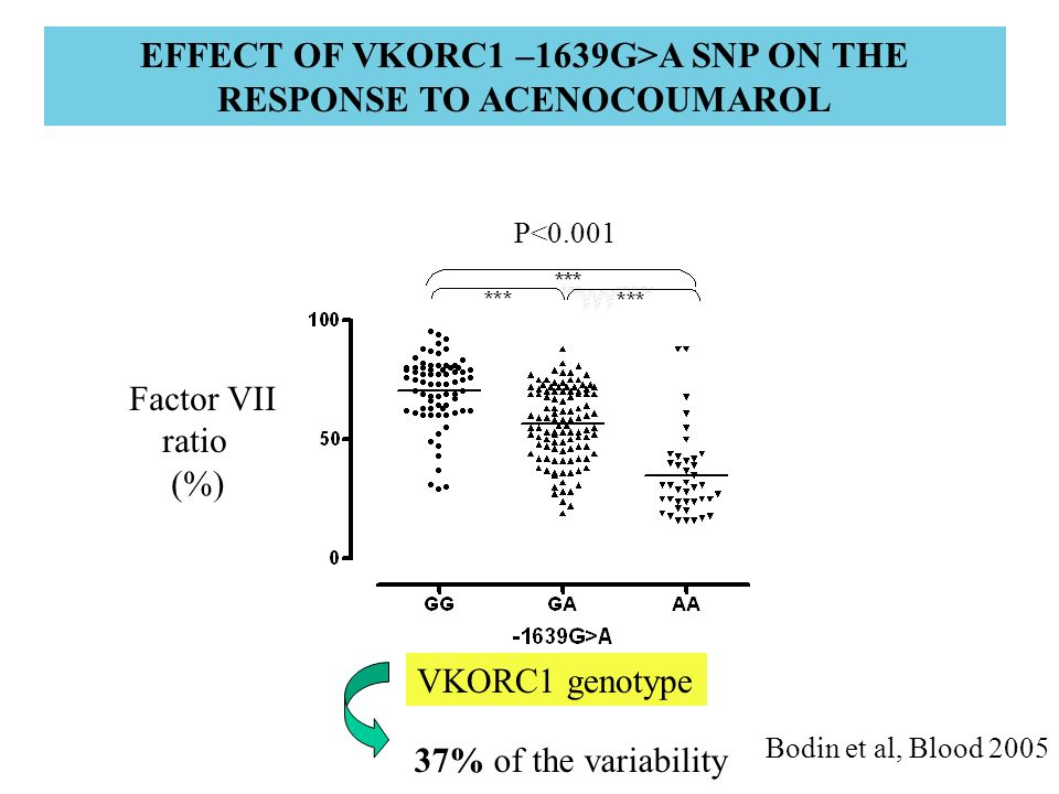 EFFECT OF VKORC1 –1639G>A SNP ON THE RESPONSE TO ACENOCOUMAROL