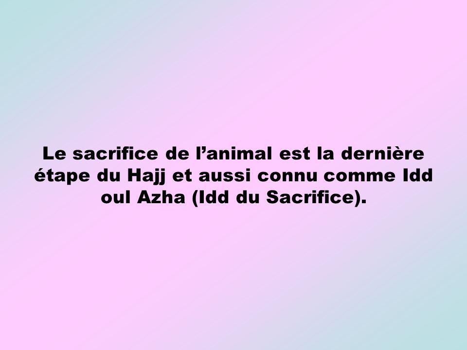 Le sacrifice de l'animal est la dernière étape du Hajj et aussi connu comme Idd oul Azha (Idd du Sacrifice).